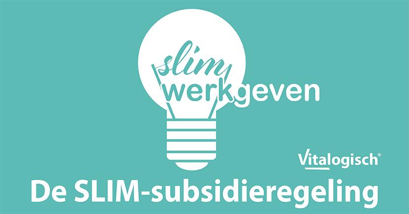 slim-subsidie